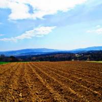 Widok Nowy Sącz Podegrodzie Polska pole góry lasy niebo pole uprawne